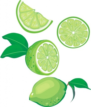 lemon icons 3d green design slices ornament