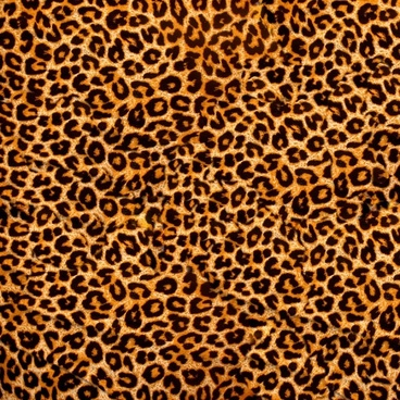 leopard flannel highdefinition picture 2