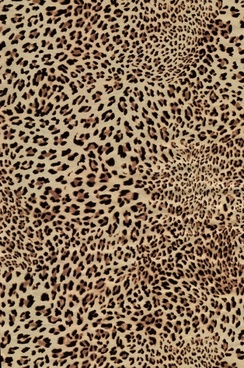 leopard flannel highdefinition picture 6