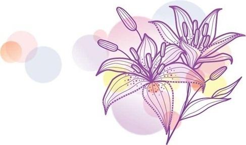 Lily Vecotr Illustration
