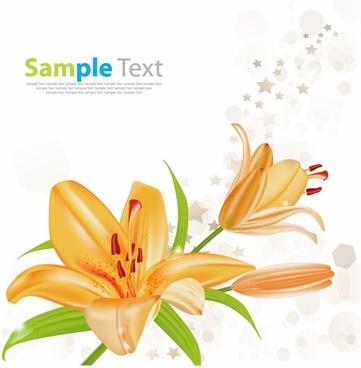 lily vector illustration