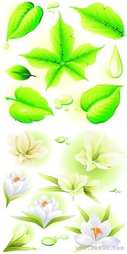 nature background flowers leaves decor modern design