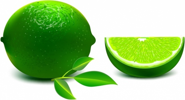 vector lime free vector download  69 free vector  for commercial use  format  ai  eps  cdr  svg
