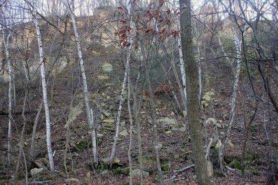 limestone quarry at bellevue state park iowa