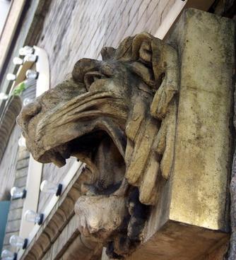 lion039s head