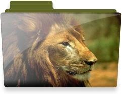 Lion folder
