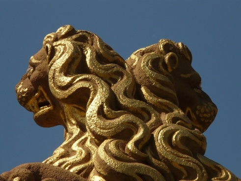 lion mane gold