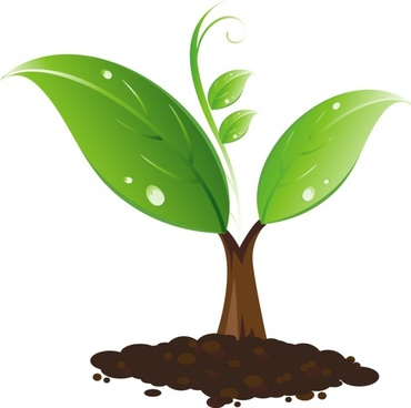 sapling free vector download 8 free vector for commercial use rh all free download com plant vector ires plant vector stock request