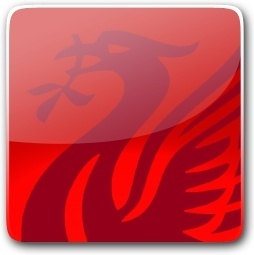 Liverbird Button