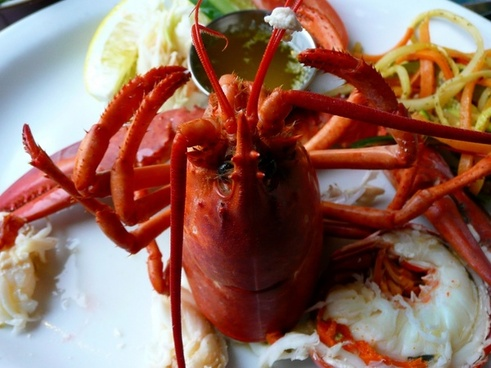 lobster cooked food