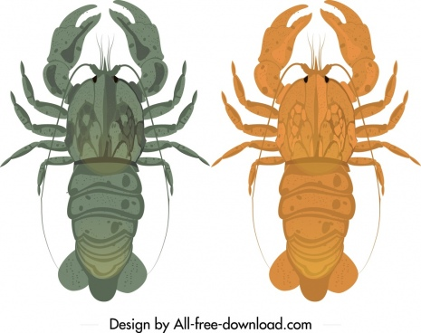 lobster icons dark orange blue design