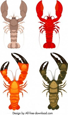 lobster species icons colored modern sketch