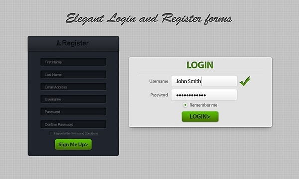 Login & Register Form