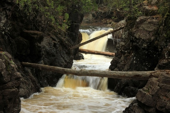 logs across the river at cascade river state park minnesota
