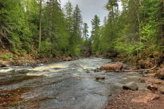 looking downstream at cascade river state park minnesota