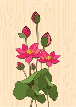 lotus background colored handdrawn sketch