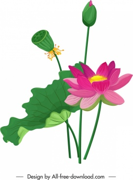 lotus painting floral leaf bud icons colorful classic