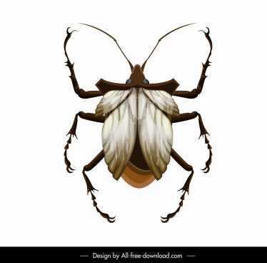 louse insect icon colored closeup modern design