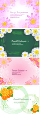 lovely small chrysanthemum backgrounds