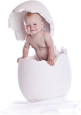 lovely the eggshell child definition picture 3