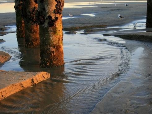 low tide at huntington beach pier