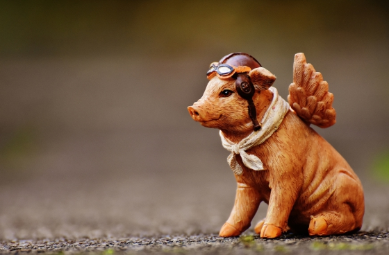 cute pig toy with angle wings