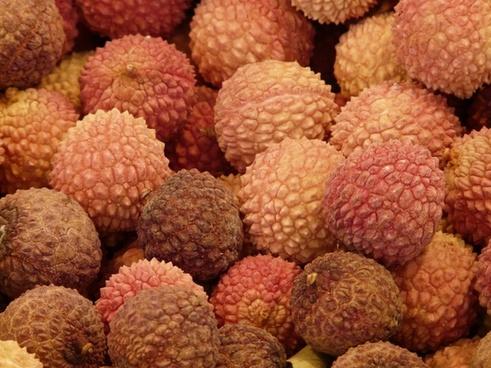 lychee litchi chinensis fruits litsch