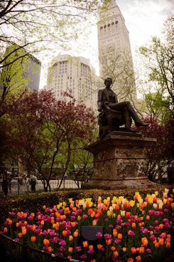 madison square park nomad manhattan