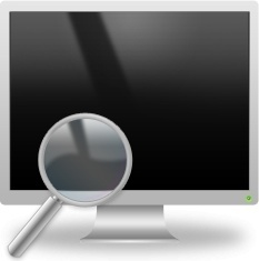 Magnifier and LCD Monitor
