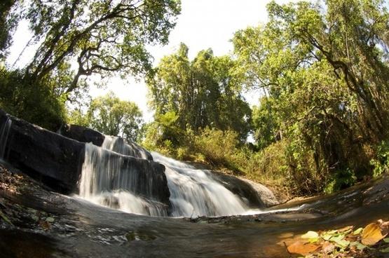 malawi nature outside