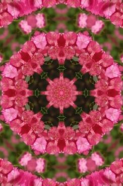 mandala flower floral