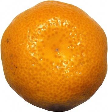 mandarin citrus fruit citrus fruits