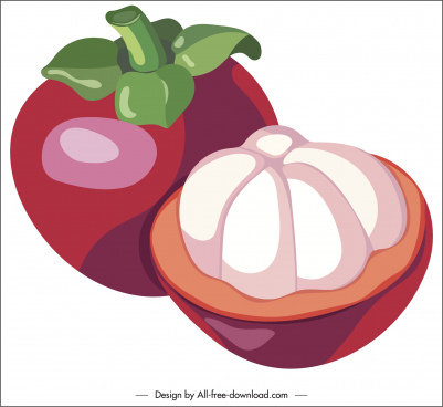 mangosteen fruit icon colored classical 3d cut design