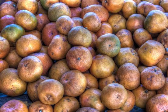 many oranges1a