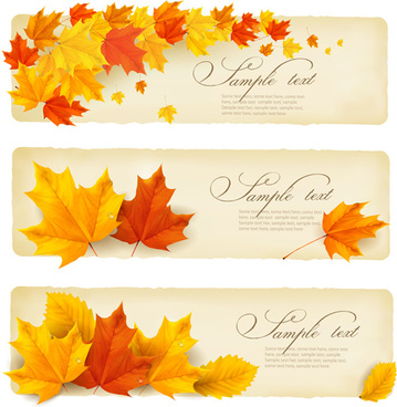 maple leaf banners vector set