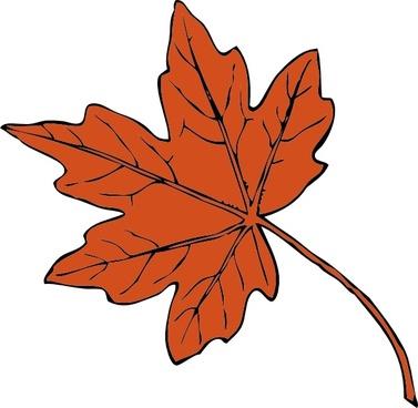 Maple Leaf clip art
