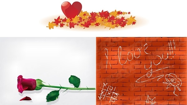 maple leaf heartshaped roses wall vector