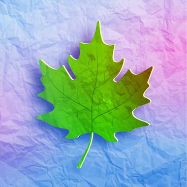 maple leaf on grunge paper