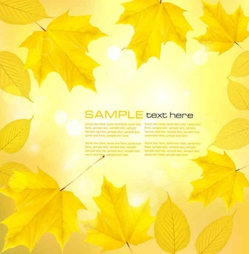 maple leaf vector background