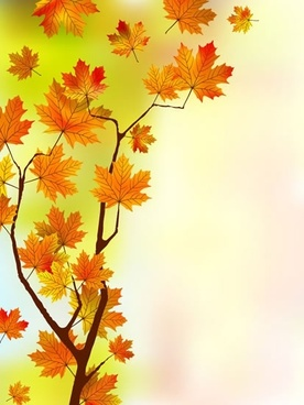 autumn background template maple leaves tree sketch