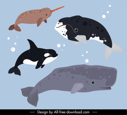 marine animals icons whales species sketch