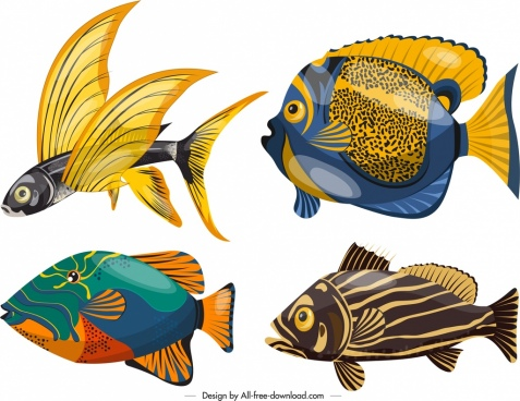 marine background fishes species icons colorful design