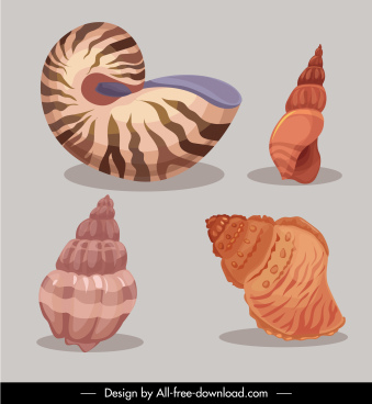 marine conch icons colored classical sketch