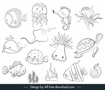 marine species icons back white handdrawn sketch