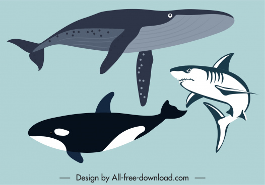 marine species icons whales shark sketch classical design