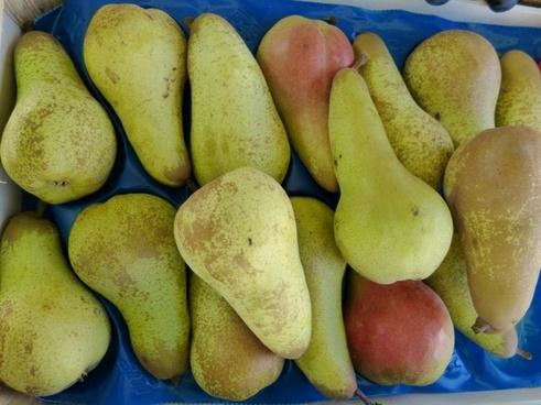 market pears eat