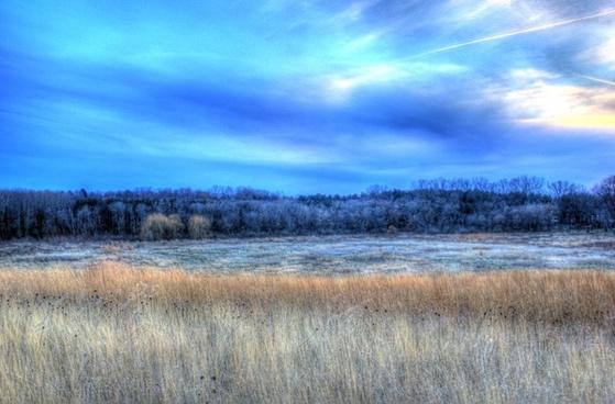 marsh overlook in madison wisconsin
