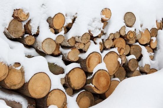 material cut log