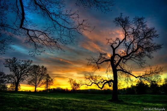 mcintire park sunrise