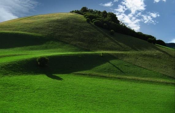 meadow mountain hill